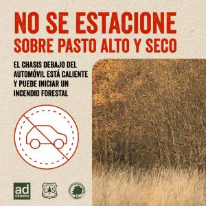 safe-rec-photo01-grass-ES-sq